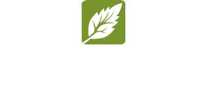 fieldstone-logo-reverse-no-r-stacked