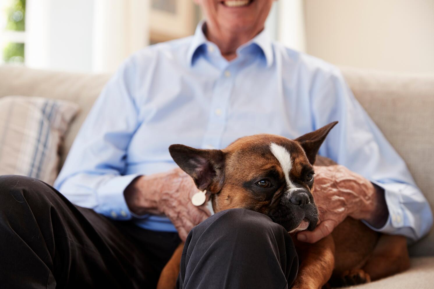 Animal Therapy for Seniors_Fieldstone